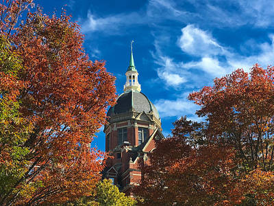 Fall And The Dome Art Print by Mark Dodd
