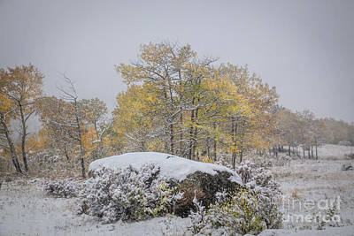 Photograph - Fall And Winter by Lynn Sprowl