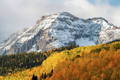 Photograph - Fall And Winter by Steve Stuller