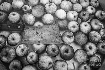 Photograph - Fall Apple Picking by Glenn Gordon
