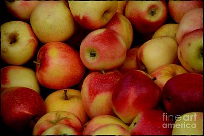 Photograph - Fall Apples by Janice Spivey