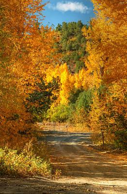 Photograph - Fall Aspen Trail by Ken Smith