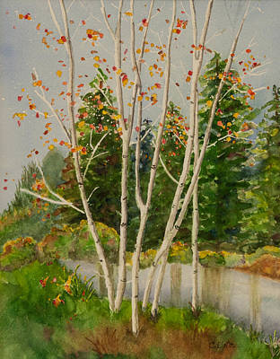 Sal Trees Painting - Fall Aspens by Connie Elste