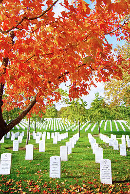 Photograph - Fall At Arlington National Cemetery by Mark Andrew Thomas