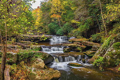 Photograph - Fall At Bark Camp Creek by Ulrich Burkhalter