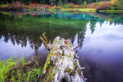 Photograph - Fall At Clear Lake by Cat Connor