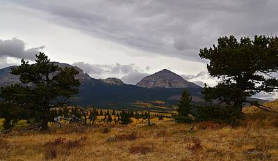 Photograph - Fall At Divide Mountain With Bristle-cone Pines by Tracey Vivar