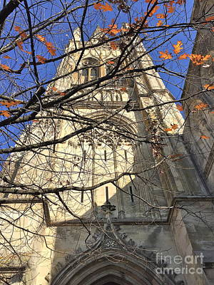 Photograph - Fall At French Cathedral by Barbara Plattenburg