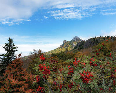 Photograph - Fall At Grandfather Mountain by Steve Hurt