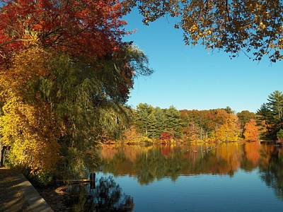 Photograph - Fall At Johnson Pond by Georgia Hamlin