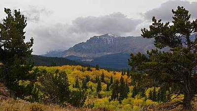 Photograph - Fall At Kupunkamint Mountain With Bristle-cone Pines by Tracey Vivar
