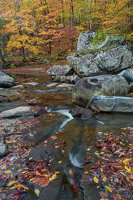 Fall At Richland Creek  Print by Damon Shaw