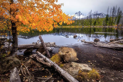 Photograph - Fall At Round Lake by Cat Connor