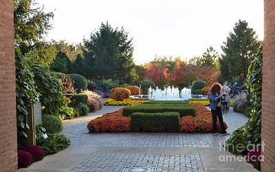 Photograph - Fall At The Botanic by Kathie Chicoine