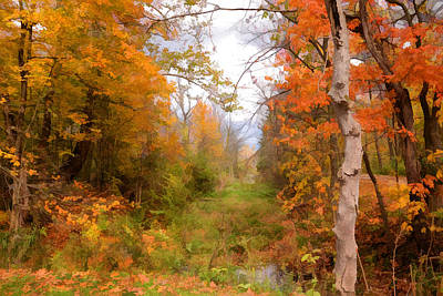 Photograph - Fall At The Marsh by Ann Bridges