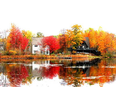 Fall At The Pond Art Print