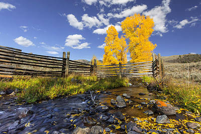 Photograph - Fall At The Ranch by Jack Bell