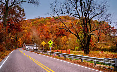 Photograph - Fall At Valley Forge by Rima Biswas