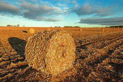 Photograph - Fall Bale by Todd Klassy