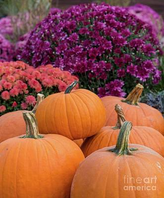 Photograph - Fall Beauty by Karin Pinkham