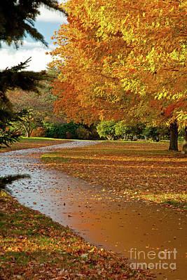 Photograph - Fall Bike Path by Butch Lombardi