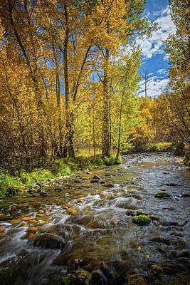 Photograph - Fall Bliss At Mcgee Creek by Lynn Bauer