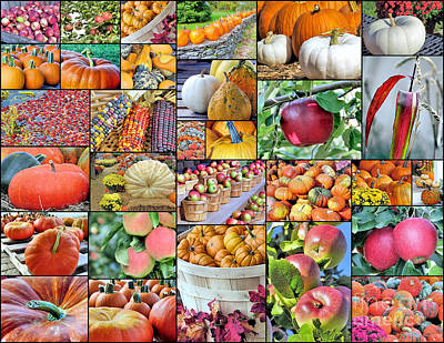 Photograph - Fall Bounty Collage  by Janice Drew