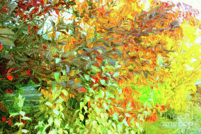 Digital Art - Fall Branches Green Yellow by Donna L Munro
