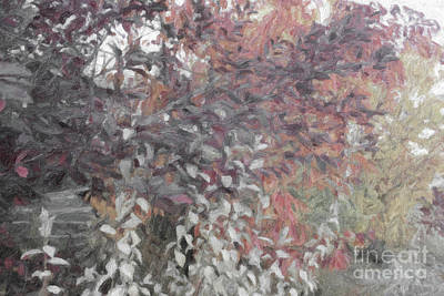 Digital Art - Fall Branches Muted by Donna L Munro