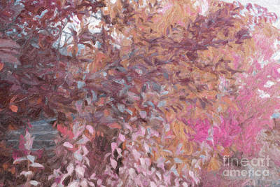 Digital Art - Fall Branches Pink And Orange by Donna Munro