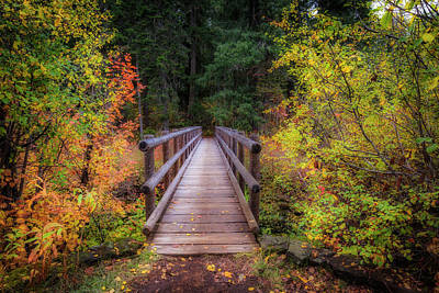 Photograph - Fall Bridge by Cat Connor