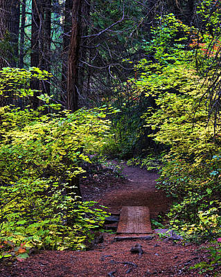 Photograph - Metolius River Trail Fall Bridge by Ken Aaron