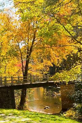 Photograph - Fall Bridge by Patricia Dennis