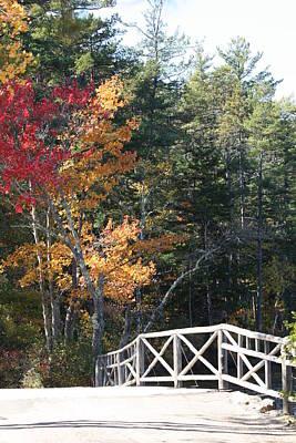 Fall Bridge Art Print by Sue Mayor