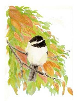 Birding Painting - Fall Chickadee by Carole Barkett