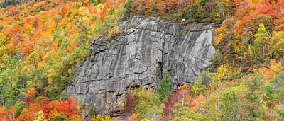 Photograph - Fall Climbing by Brad Wenskoski