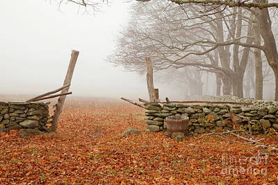 Photograph - Fall, Coggeshall Farm by Butch Lombardi