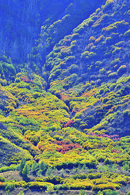 Photograph - Fall Color Alluvial Fan In Glenwood Springs by Ray Mathis