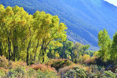 Photograph - Fall Color Along Interstate 70 by Ray Mathis