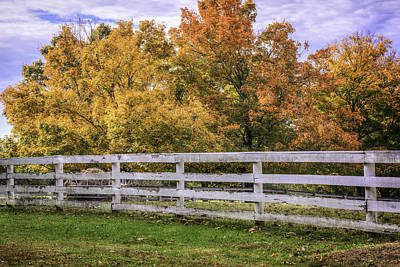 Photograph - Fall Color And Fence by David Waldrop