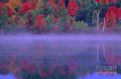 Photograph - Fall Color And Fog Thornton Lake Michigan by Dave Welling