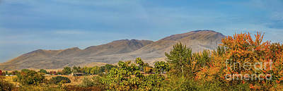 Photograph - Fall Color And Squaw Butte by Robert Bales