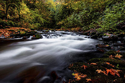 Fall Color At Cedar Creek Art Print