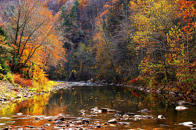 Baker Island Photograph - Fall Color Elk River by Thomas R Fletcher