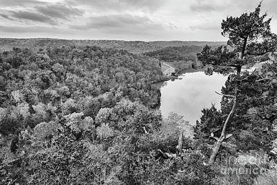 Photograph - Fall Color In Black And White by Dennis Hedberg