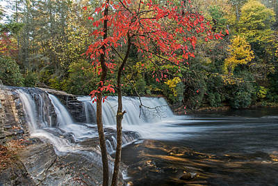 Photograph - Fall Color In Dupont State Forest North Carolina by Willie Harper