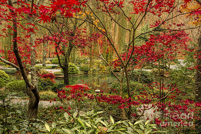 Photograph - Fall Color In The Japanese Gardens by Barbara Bowen