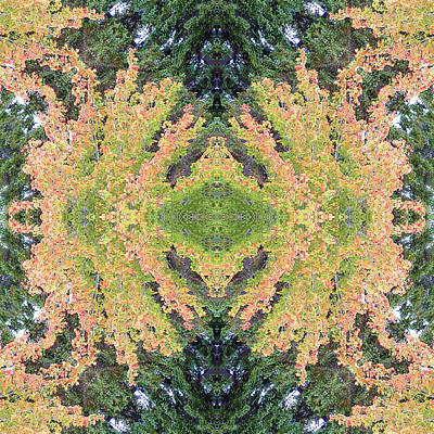 Art Print featuring the photograph Fall Color Kaleidoscope by Bill Barber