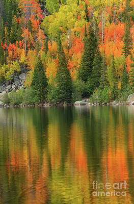 Photograph - Fall Color On Bear Lake In Rocky Mountain National Park by Ronda Kimbrow