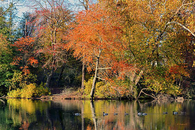 Photograph - Fall Color Reflections by Brian Wallace